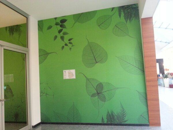 Wohnung Streichen Erst Decke :  Ab  Farbe blättert und platzt beim streichen der Wand oder Decke ab